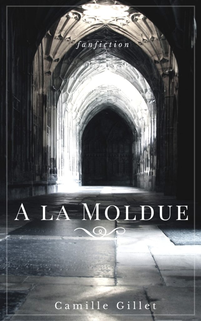 A la Moldue fanfiction Harry Potter par Camille Gillet